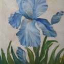 blue iris oil painting