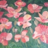 floral painting Sunlit Poppies red poppies original oil painting by Navdeep Kular