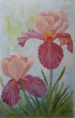 Iris Garden 2 pair og irises oil painting by Navdeep Kular