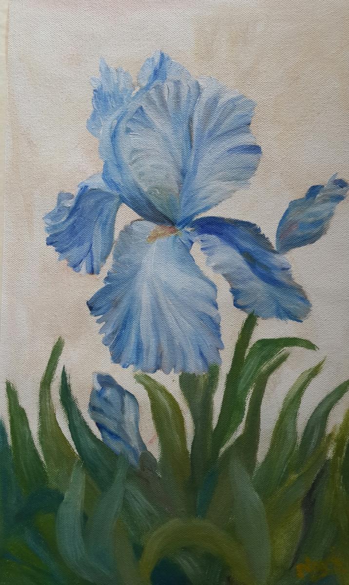 Blue Iris single flower oil painting by Navdeep Kular