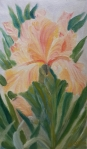 Yellow Iris single flower oil painting by Navdeep Kular
