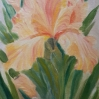Yellow Iris single flower oil painting by Navdeep Kular