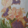 Irises oil painting by Navdeep Kular