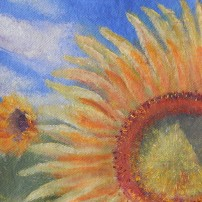 #159 Sunflower Fields 2