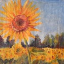 sunflower fields oil painting with a backdrop of blue sky by Navdeep Kular