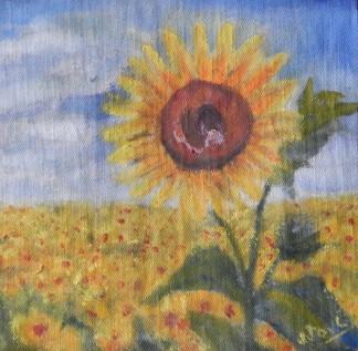 sunflowers oil pinting by Navdeep Kular