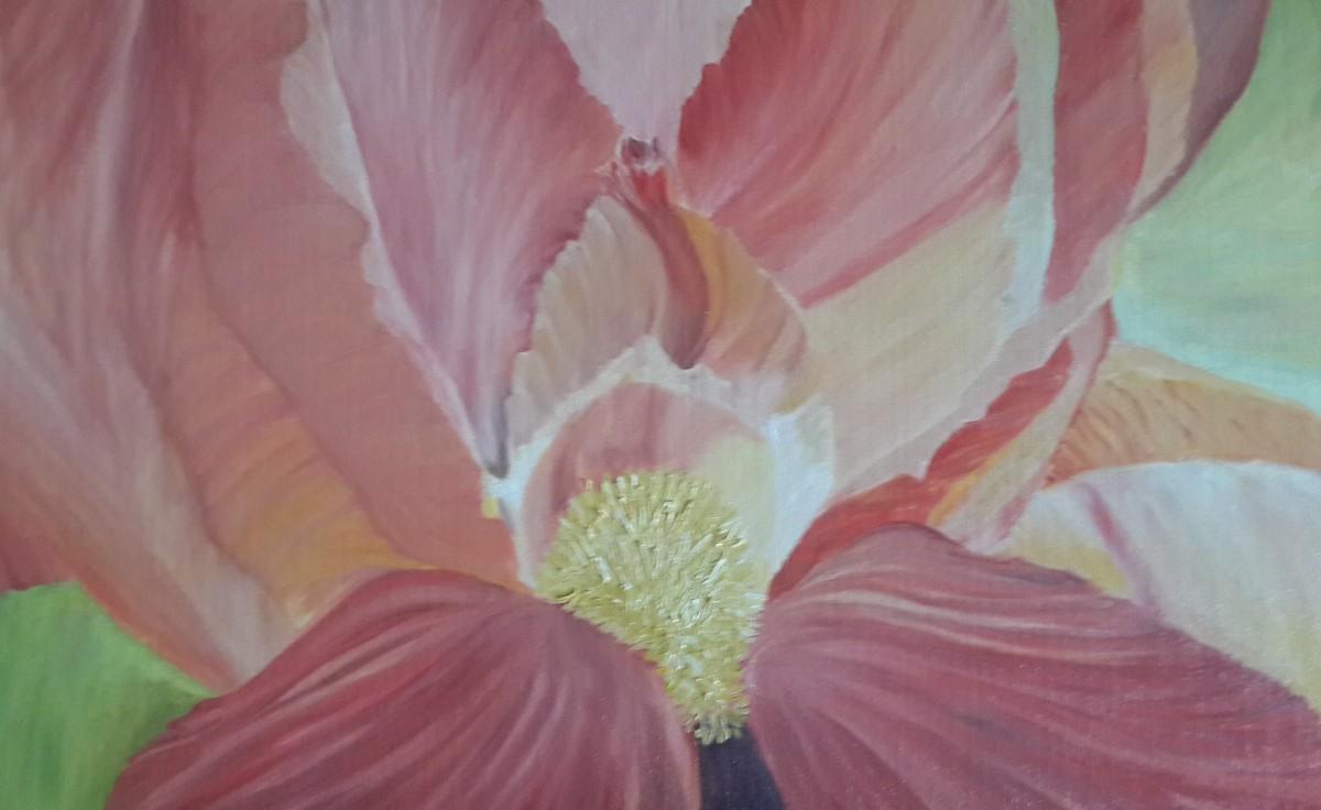 Iris oil painting by navdeep Kular